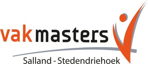Logo Vakmasters Salland - Stedendriehoek